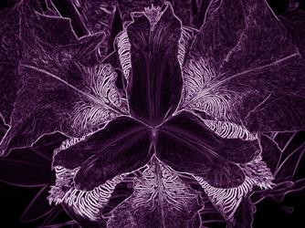 poems-about-faith-2