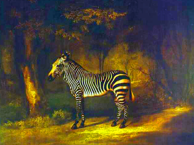 zebra-poems